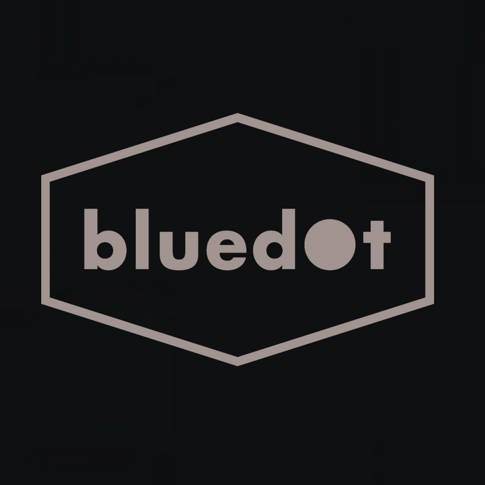 Bluedot Present: Protecting Our Pale Blue Dot